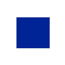 VVV Volendam